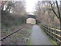 SS9086 : Cycle path alongside disused railway by John Light