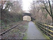 SS9086 : Cycle path alongside disused railway by John Light