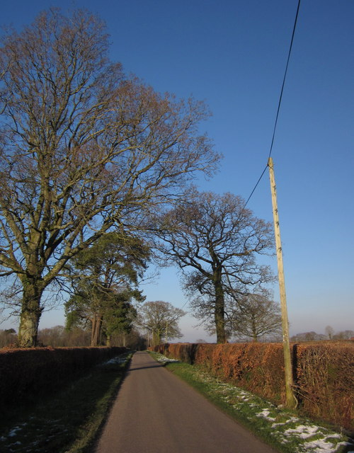 Lane near Leigh Cross