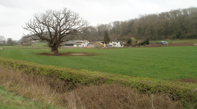 Field on the south side of A48 west of Caerwent