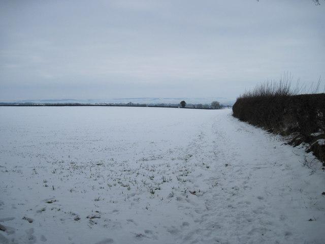 Field  edge  Footpath  down  to  Pickering
