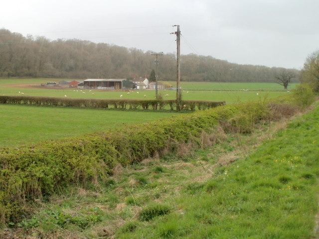 Westwood Farm near Caerwent