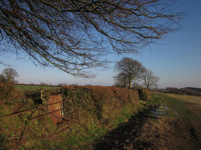 Path to Hagdon Farm