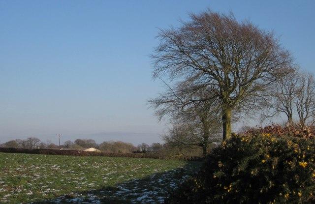Field by Hagdon Farm