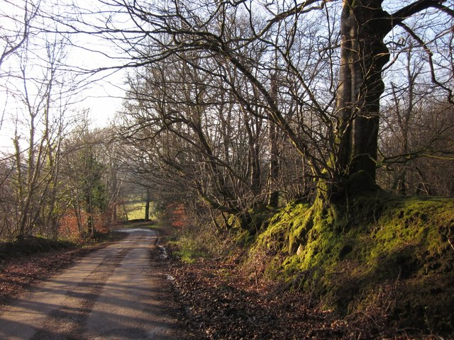 Lane to Leigh Court