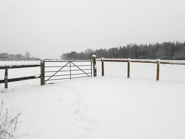 Hale Upper Field/Hale Field (1)