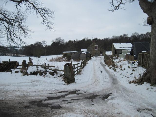 To  Keldy  Banks  Farm