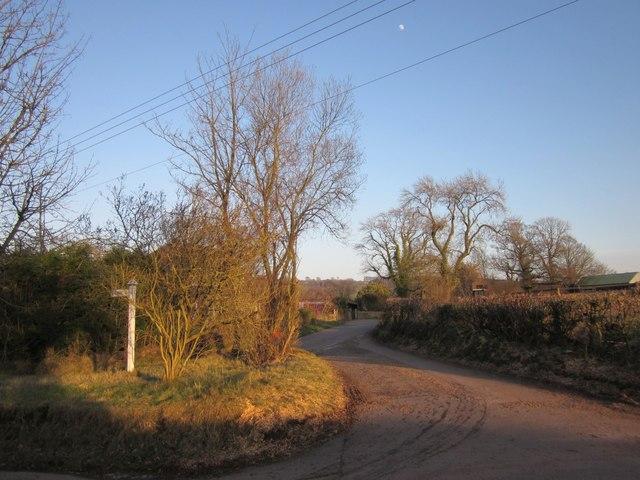 Lane to Hayne Farm