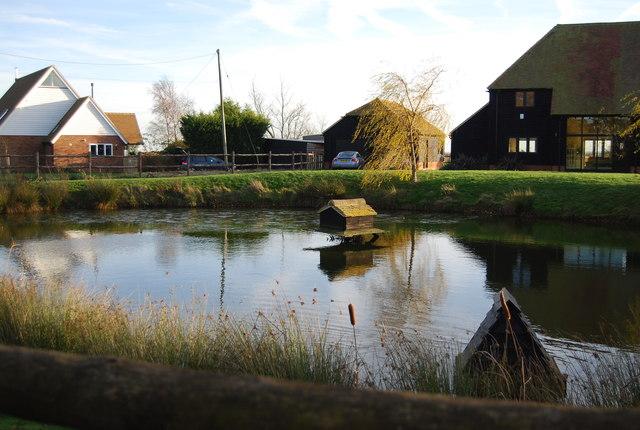 Pond, Old Tree Farm