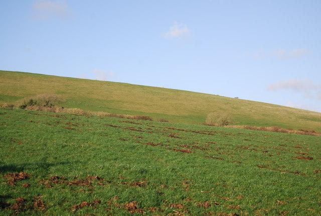 Farmland west of Litton Cheney