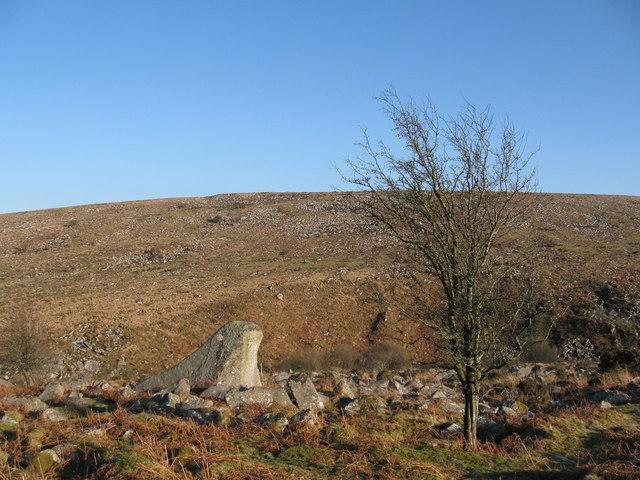 Moorland scene, near Belstone