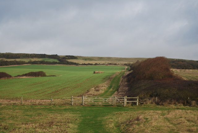 Path along a hedge