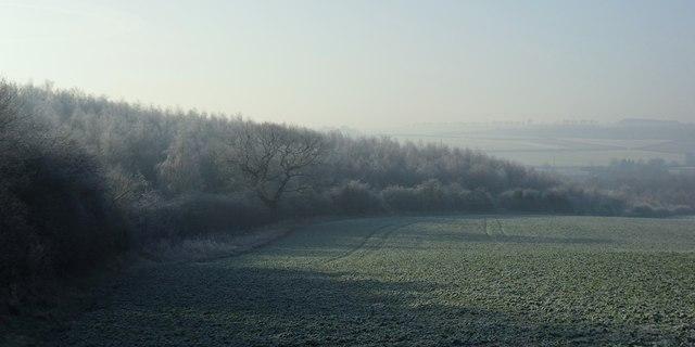 Frosty farmland near Haigh.