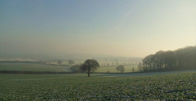 Farmland near Wooley.