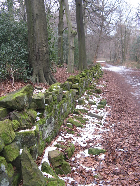 Path in Greno Woods