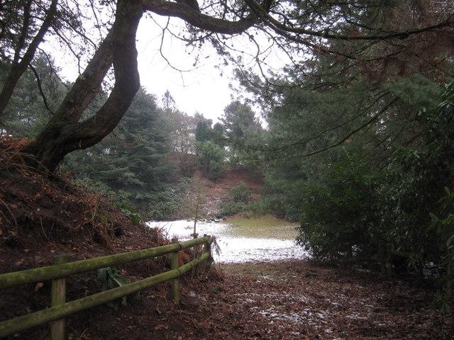 Gorse Covert, Whirley Lane, Henbury Macclesfield
