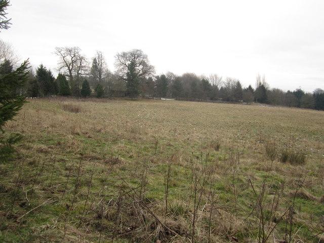 Birtles Bowl Henbury Macclesfield