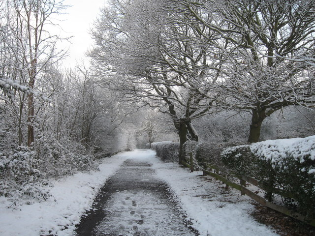 Footpath to The Dell, Hornchurch, Essex