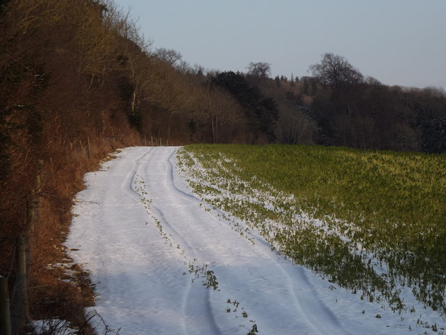 Snowy Field Edge