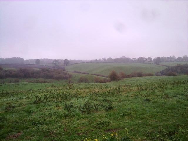 View East near Whitestocks