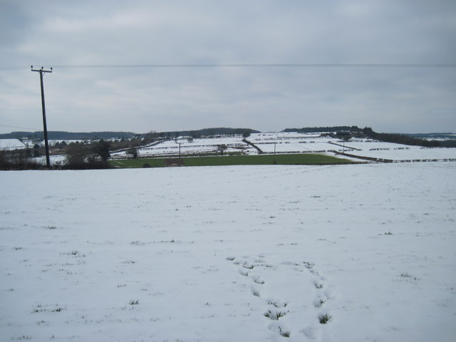 Fields  north  of  Rawcliff  Road