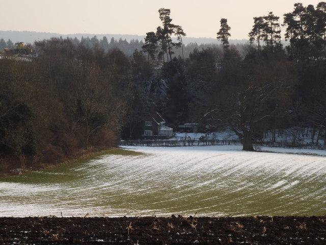 Field by Water Lane