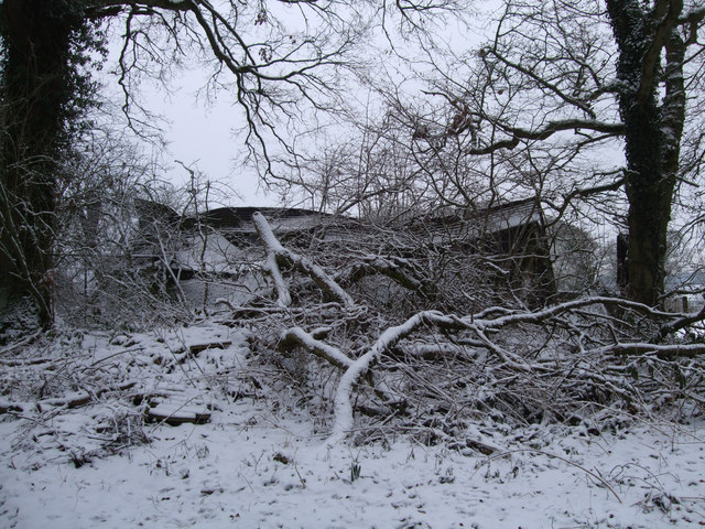Collapsed barn, Thicket Copse
