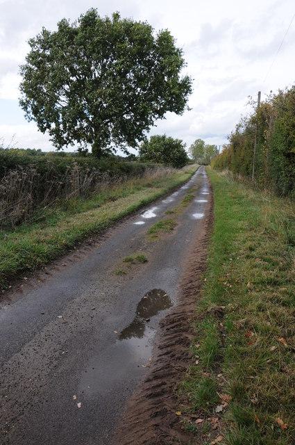 York Lane, Wick