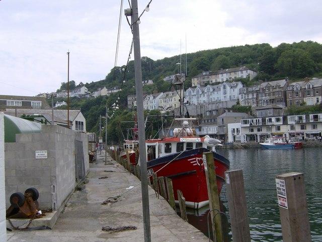 Fishing Boats and Fishing Gull at Looe