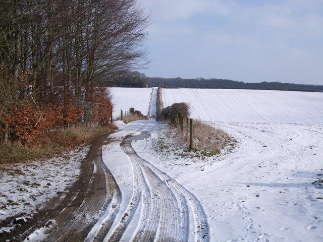 Farm track above Mildenhall