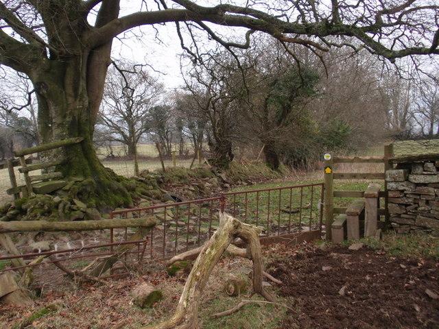 Llwybr Glynhir-Llandybie Path