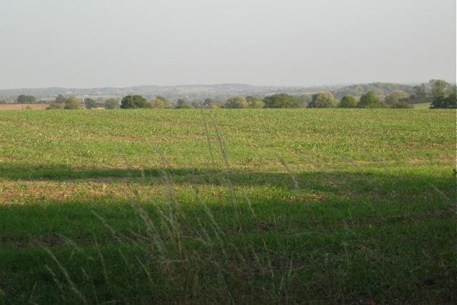 Arable field south of Upper Wawensmoor