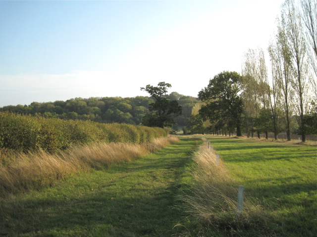 Bridleway to Greenhill Farm, and footpath