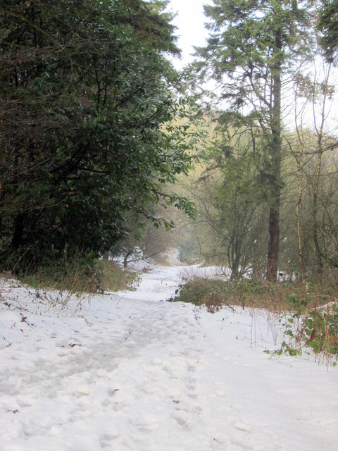 Monument Lane, Lickey, Snowy Path