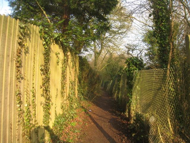 Footpath behind Kings Orchard