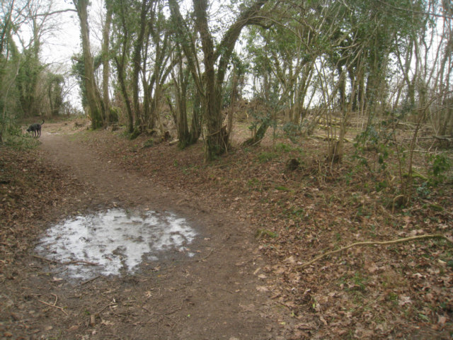 Cold going - Small's Copse