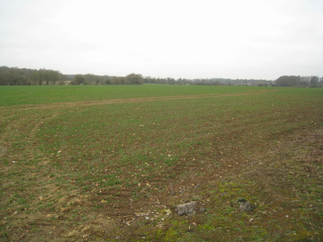 View across East Field (37.5 acres)