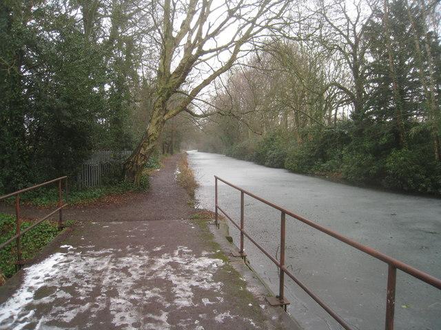 Frozen Basingstoke Canal (Fleet)