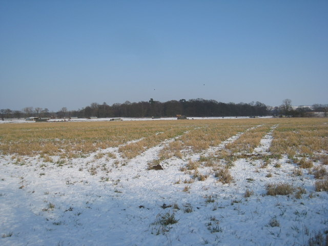 View towards Noble's Wood
