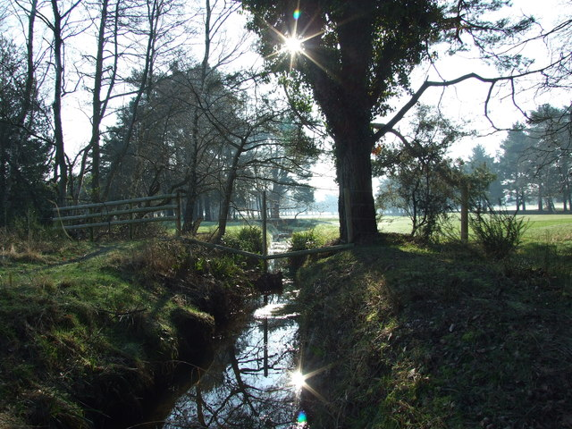 Stream On Parley Common