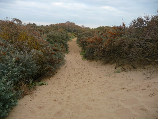 Berrow - Footpath