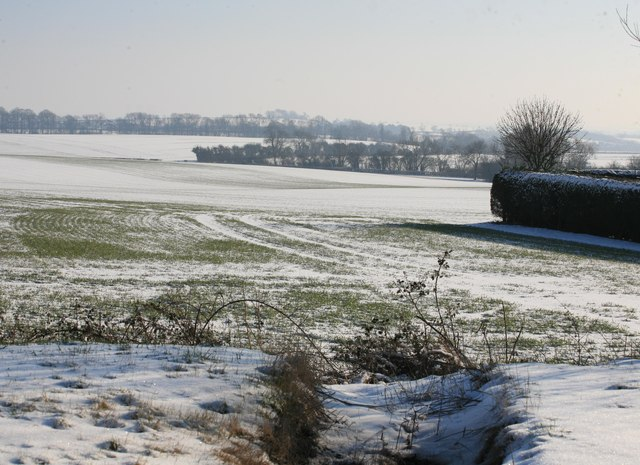 Snow in the fields north of Grove village
