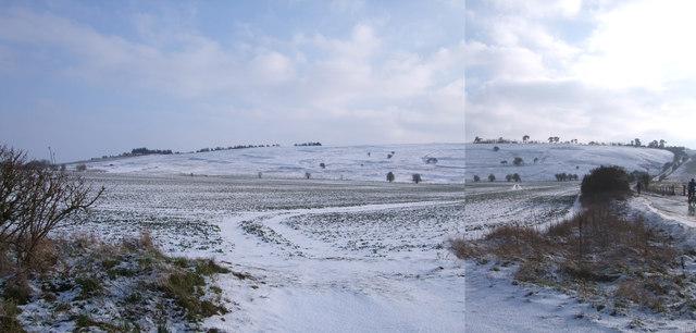 Undated field system, Burderop Down
