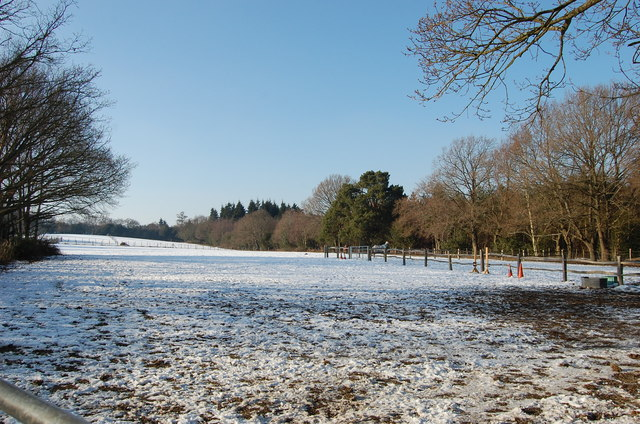 Snowy field near Flimwell