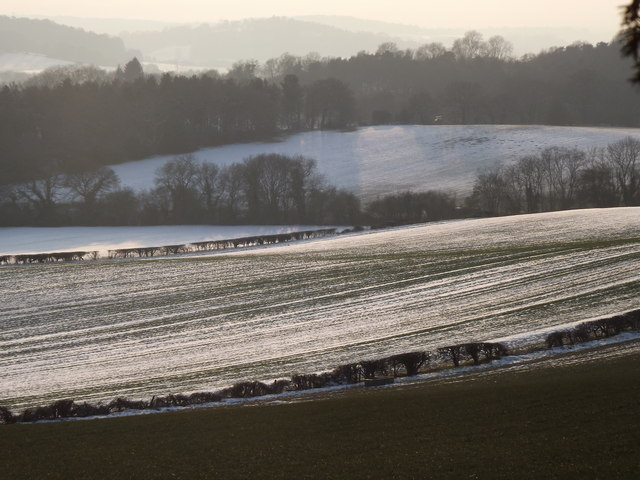 Snowy Fields by Water Lane