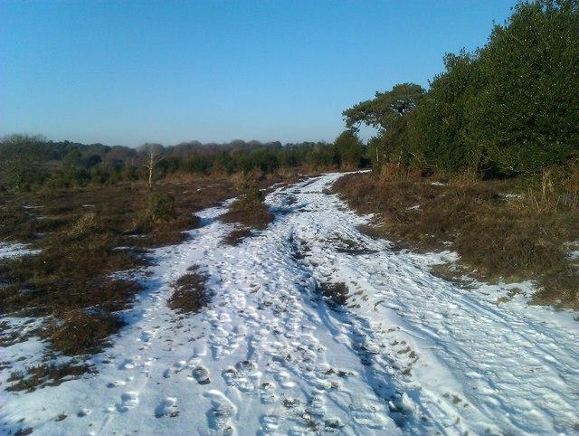 Snowy track, Homy Ridge