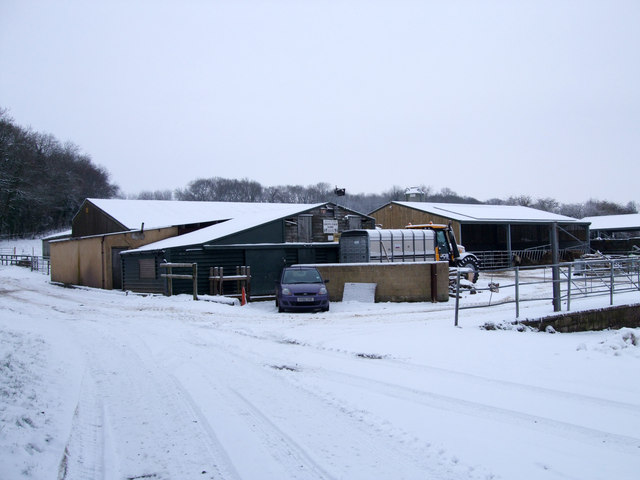 Grove Farm Dairy