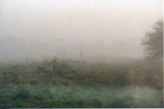 Morning Mist on the Lake 7