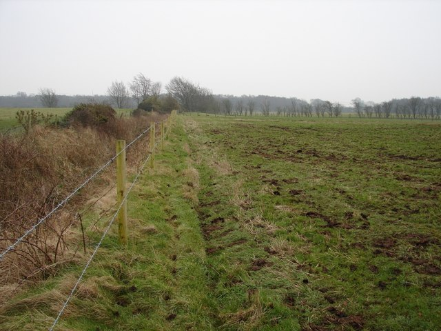 Field boundary at Westhills Moss