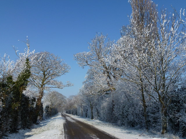 Hoar frost and snow along Durham's Road